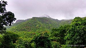 Palghar - Image: Wagobha mountain