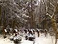 Waldfriedhof muenchen 2010-01-11 00598.JPG