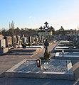 War memorial on the cemetery Vösendorf, Lower Austria, Austria-grave PNr°0659.jpg