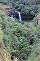 Water springs.jpg