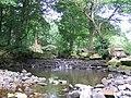Weir on the River Washburn - geograph.org.uk - 29038.jpg