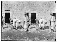 Weli of Budrieh at Sherafat and the preparing of a sacrifice. Skinning the sheep. LOC matpc.01420.jpg