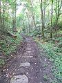 Well preserved plateway near Flour Mill - June 2012 - panoramio.jpg