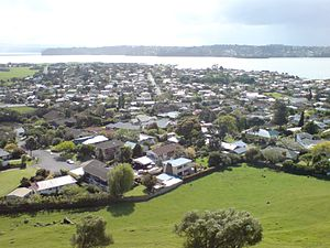 Western part of the suburb seen from Mangere Domain.