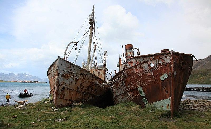 File:Whaling and Sealing Ships at Grytviken, South Georgia (5686062332).jpg