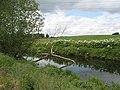 White Cart Water - geograph.org.uk - 1544155.jpg