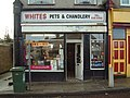 Whites Pet Shop - geograph.org.uk - 359858.jpg