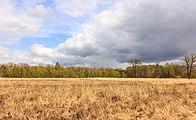 Wijnjeterper Schar, Natura 2000-gebied provincie Friesland 03.jpg