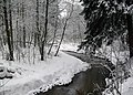 Winter river (3166299766).jpg