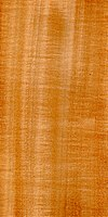 Wood Tilia platyphyllos.jpg