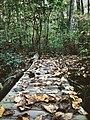 Wood bridge Stewart Run Kirkwood Pennsylvania picture.jpg