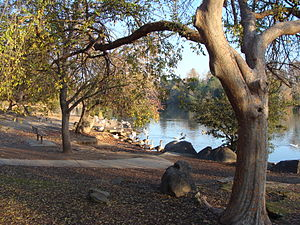 Woodward Park (Fresno) - Image: Woodward Park Nima 1
