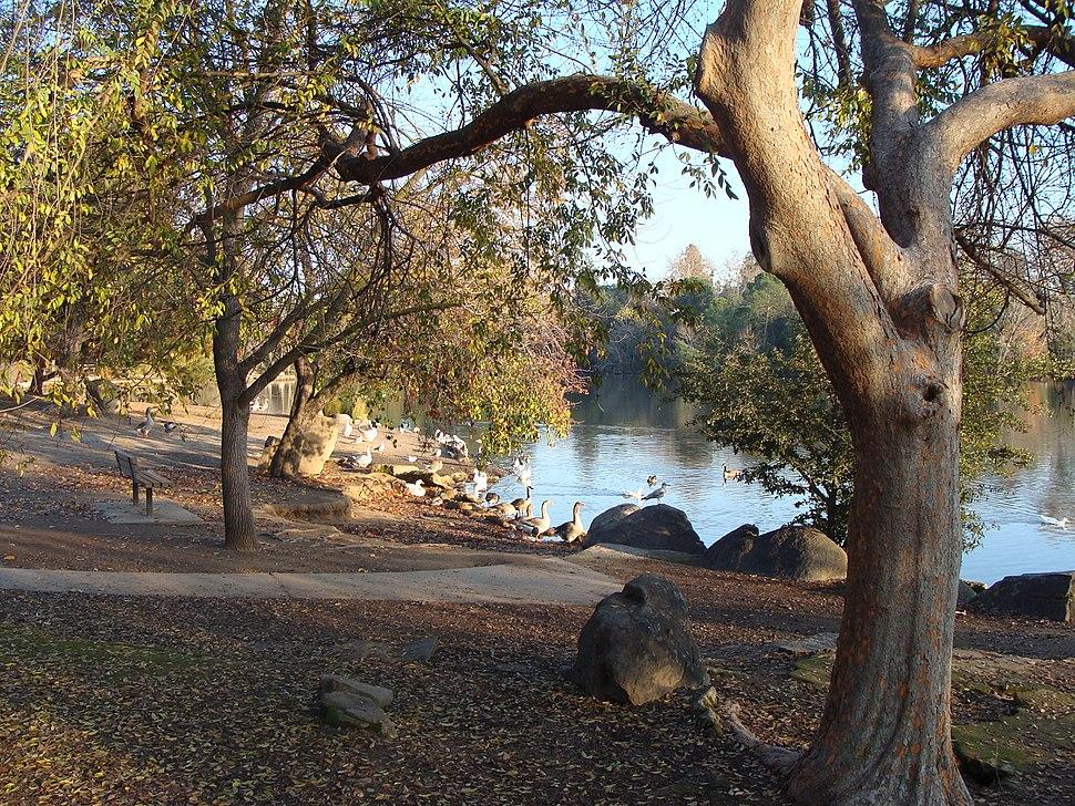 Woodward Park Nima1