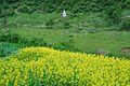 Xiaojin, Aba, Sichuan, China - panoramio (76).jpg
