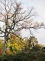 Zoo Berlin Herbst 3.jpg
