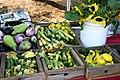 Zucchini (Alabama Extension).jpg