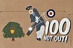 """""""100 NOT OUT!"""" - Nose art on Tornado GR.4 'ZD793' (41861568435).jpg"""