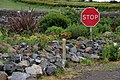 """""""Stop"""" sign, Millbay Road, Islandmagee - geograph.org.uk - 173888.jpg"""