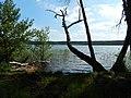 +20180611Müritz-Nationalpark.Feisneck See.-015.jpg