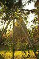 ® S.D. MADRID PARQUE DEL OESTE PARQUE DE LA TINAJA - panoramio.jpg