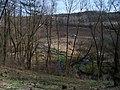 Řeporyje, Dalejský potok a Mládkova ulice, u vápenky (01).jpg
