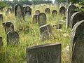 Żarki, cmentarz żydowski, pocz.XIX.JPG