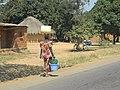 ΛΟΥΜΠΟΥΜΠΑΣΙ 2012 059.jpg