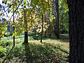 "Бабье лето (парк ""Швейцария"").jpg"