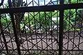 Дендропарк Лами DSC 0331.jpg