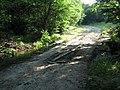 Дерев'яний міст перед Любіжнянським Гуком.jpg