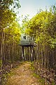 Дом над лесом, парк «Никола Ленивец».jpg