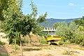 Испания - panoramio (24).jpg