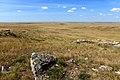 Каменистая поверхность Бандитских гор - panoramio.jpg