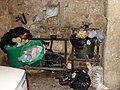 Кошки на мусорных баках (40090805805).jpg