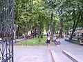 Міський сад, алея.JPG