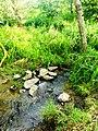 Речка Бережанка - panoramio.jpg