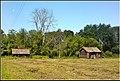 Старые баньки - panoramio.jpg