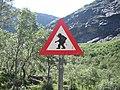 זהירות טרולים בדרך.JPG
