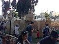 מיצג טירת קרטון בגודל 7*7 מטר שהיא מבוך לילדים ומבוגרים.jpg