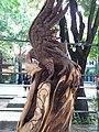 مجسمه چوبی سیمرغ.jpg