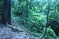 হাজারিখিল বন্যপ্রাণী অভয়ারণ্য ২.jpg