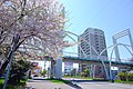 北海道道1148号札幌恵庭自転車道線(Shiroishi cycling road) - panoramio (6).jpg