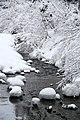 寒流 - panoramio.jpg