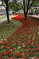 彰化費茲洛公園 Zhanghua Fitzroy Gardens - panoramio (4).jpg