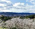 憩いの森公園から望む東広島市市街地.jpg