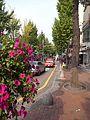 梨大ショッピング通り - panoramio.jpg
