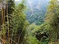 神仙谷 Fairy Valley - panoramio.jpg