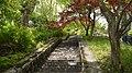 越前大野城3 - panoramio.jpg