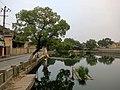 马眼漕 - Mayan Pond - 2015.10 - panoramio.jpg