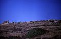 003Zypern Amathus Akropolis (14081134263).jpg